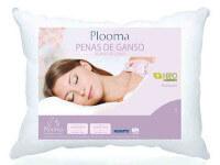 alm-plooma-100-00.jpg