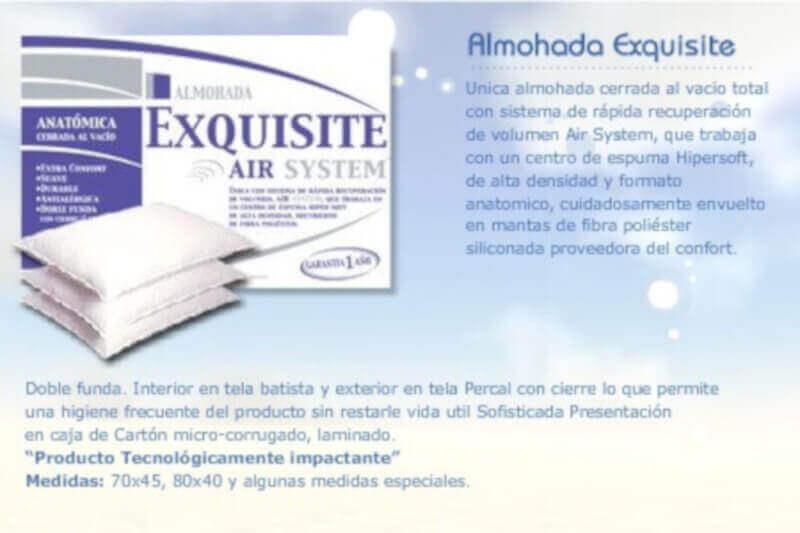 Almohada Exquisite 0,70 x 0,40 x 14